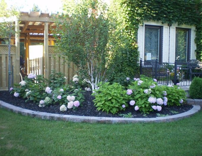 36 best images about garden beauties on pinterest for Backyard low maintenance landscaping ideas