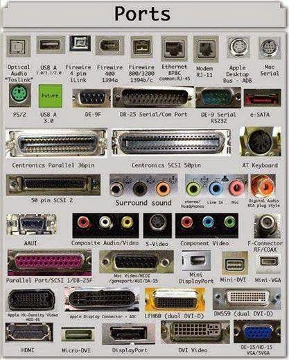 Crazy Life: Port & Plug
