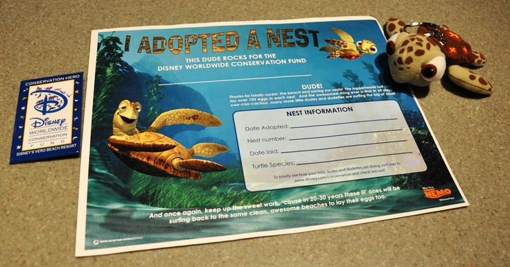 I will def be Adopting a Sea Turtle Nest next time I am in Disney World-- my fave animal and my fave place! :)