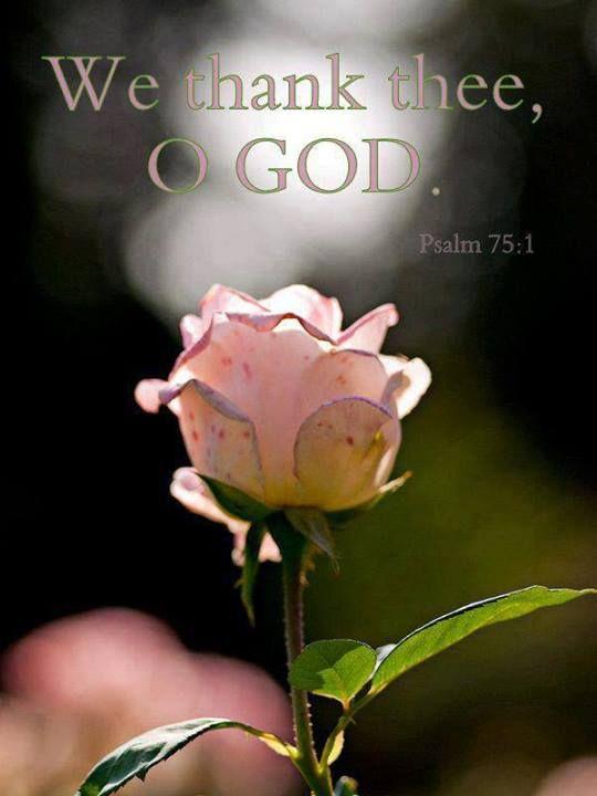 Psalm 75:1   https://www.facebook.com/photo.php?fbid=10151593703543091