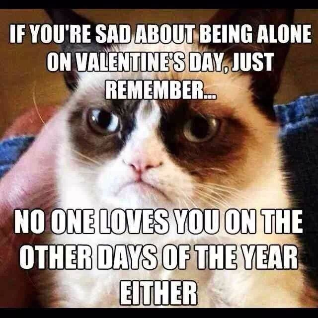 funny bitter valentines day quotes