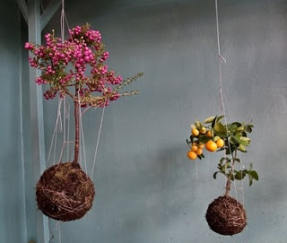 DIY des fleurs suspendues au plafond!