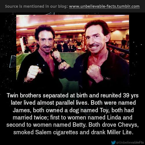 prallel lives the jim twins Jim springer and jim lewis were identical twins who were separated at birth  they found that they had been living almost parallel lives.