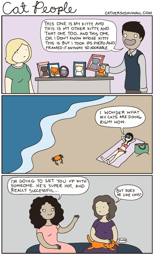 cat versus human - These cartoons always fit me, but this one fits me absolutely perfectly.