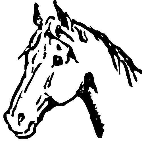 kopf eines pferdes zum ausdrucken  pferdekopf pferd