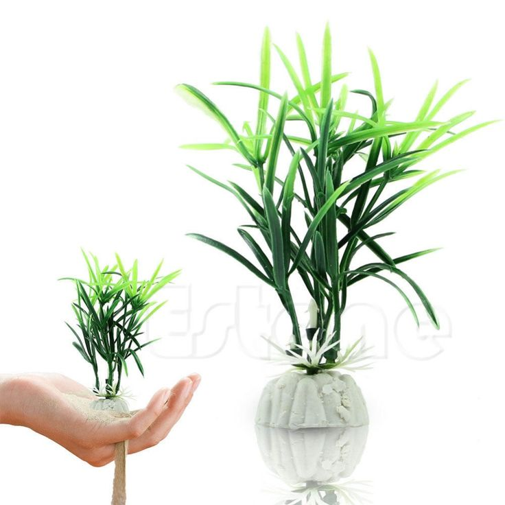 >> Click to Buy << 2pc/lot Ornamental Plants Fish Tank short paragraph Lucky Bamboo artificial water #Affiliate