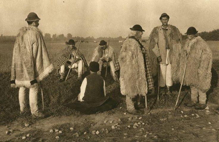 Ciobani-din-Novaci