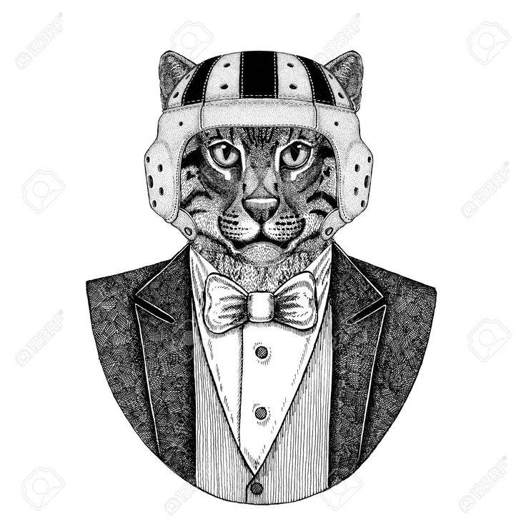 Wild cat Fishing cat Elegant rugby player. Old school vintage rugby helmet. Amer…
