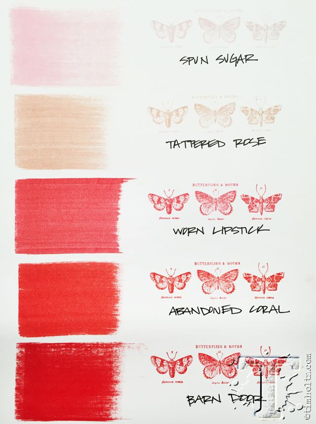 The 2nd of 12 new distress ink colors for 2015 ~ introduced by Tim Holtz for Ranger Ink. Called abandoned coral ~ it is shown here with the coordinating pallet of reds.