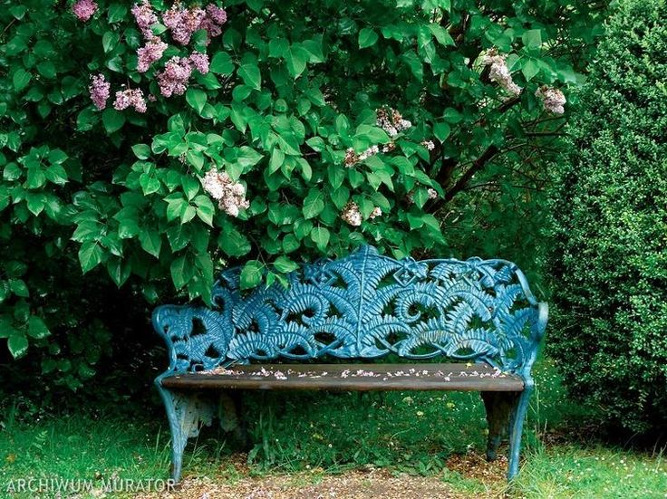 aranżacja-ogrodu