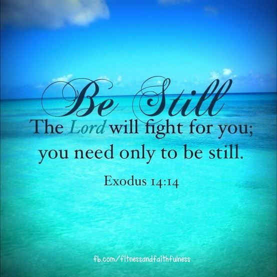 EXODUS 14:14.  Be still... The Lord will fight for you!