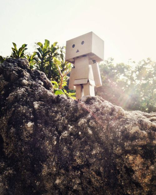 """""""The only way to do great work is to love what you do. If you haven't found it yet keep looking. Don't settle."""" — Steve Jobs  #quote #quotesoftheday #danbo #danboard #figurine #toys #toygraphy"""