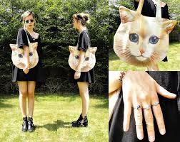 """Результат пошуку зображень за запитом """"ring cat"""""""