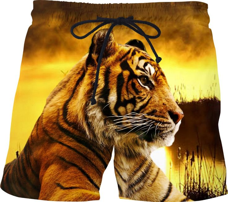 Check out my new product https://www.rageon.com/products/tiger-and-sunset-swim-shorts on RageOn!