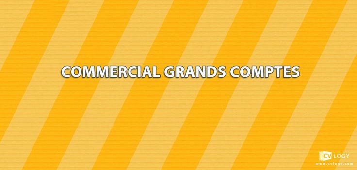 #Recrutement #Commercial #grands_comptes---->