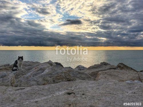 Morning sea view