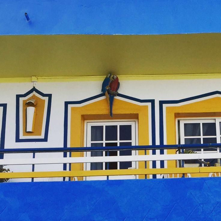 Corralejo house.