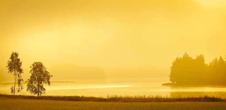 Golden moment at the morning. Shot in 2011. Location Siilinjärvi, Finland.