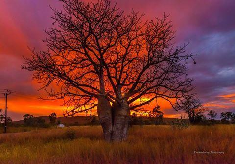 East Kimberley Sunset Kununurra WA by Phil Normandale {Facebook}