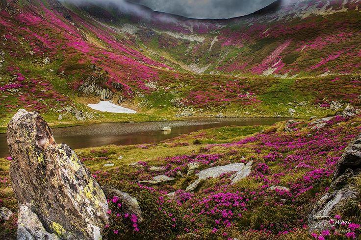 httpswww.facebook.comMihaiNicoaraPhotography /  Lacul Lala Mic, localizat în Munţii Rodnei, sub vârful Ineu.