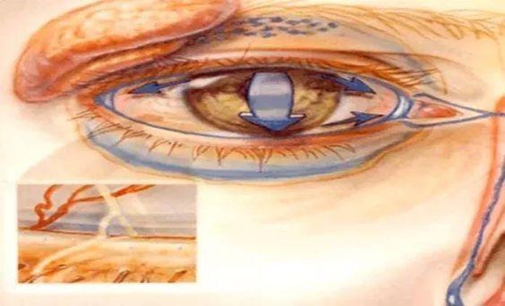 SI Si a veces sientes que te tiembla el párpado del ojo tienes que saber esto
