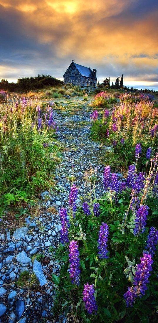Fairyland, Lake Tekapo, New Zealand