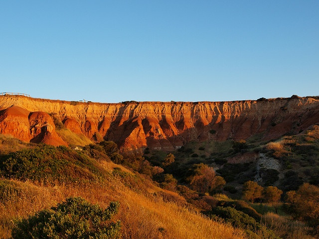 No, this isn't the Grand Canyon, this is the beautiful Hallett Cove Conservation Park (picture by panGH, via Flickr).