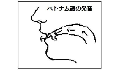 ベトナム語の発音の仕方 正しい発音に練習しましょう!正しい発音を 簡単で 日本人にとって 発音しやすい 音声から 学びましょう。正確なベトナム語の発音仕方。ベトナム人が分かってくれるようにベトナム語の発音仕方を勉強して練習しましょう。betonamugo hatsuon shikata - houhou