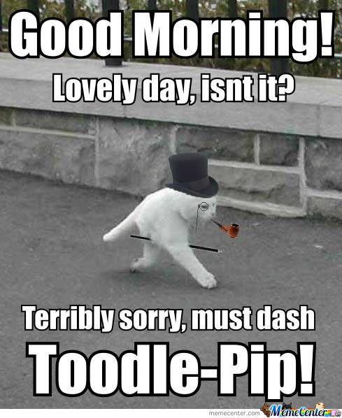 Good Morning Sunshine Urban Dictionary : Funny good morning memes art and artists