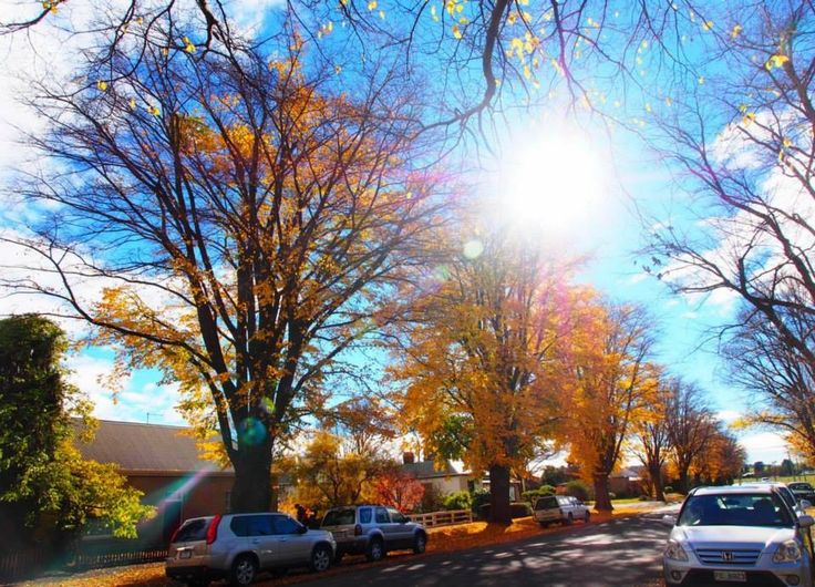 Ross-a small town in Tas