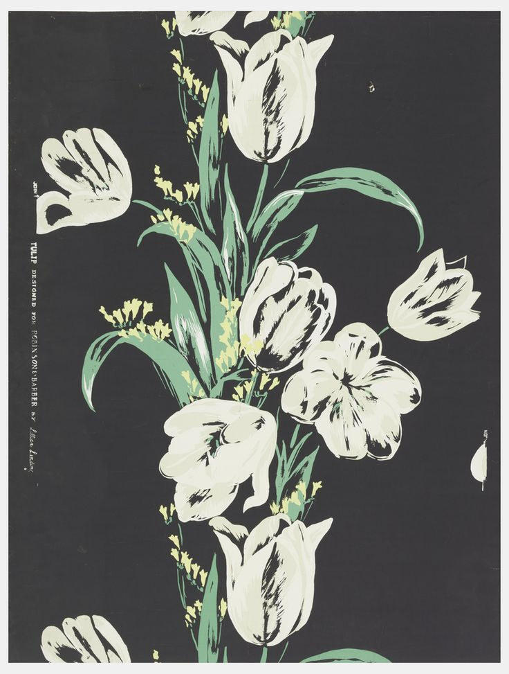 Sidewall, 'Tulip' | USA, 1947 | Screen-printed on paper | Very large white tulips in ascending vertical column. Small yellow flowers are interspersed with the bright green leaves which cluster about the tulip stems. A black ground. Drop match | Cooper-Hewitt