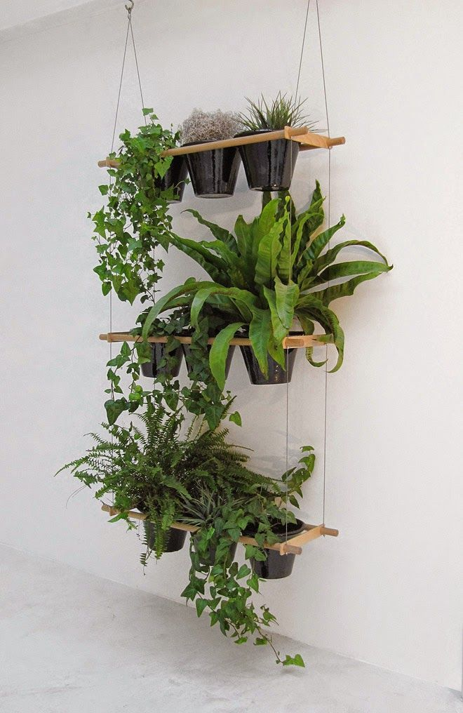The Design Chaser hung from the ceiling with plants that grow downwards /indoor/greenery/