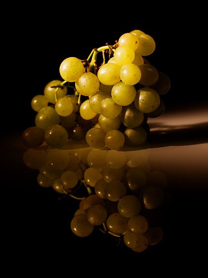Amazing grapes - chiaroscuro and reflections - still life by Salvo D'Avila