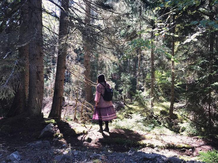 Forest adventures with @judith.jaguar on Instagram.