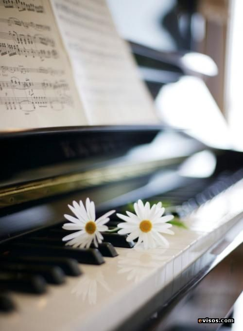 I like this picture because it is a beautiful picture of a piano, with some pretty daisies on top. Patterns&symmetry
