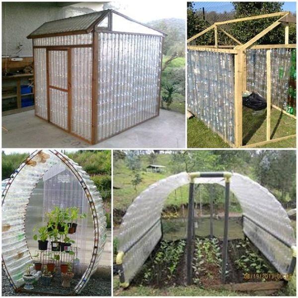 Plastic Bottle Greenhouse on Homestead