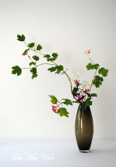 1000 Images About Ikebana Nageire Styles Modern On Pinterest Cherries Floral