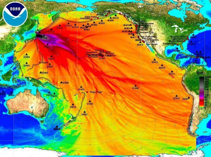 Best Nuclear Disasters Ideas On Pinterest Chernobyl Disaster - Japan exclusion zone map