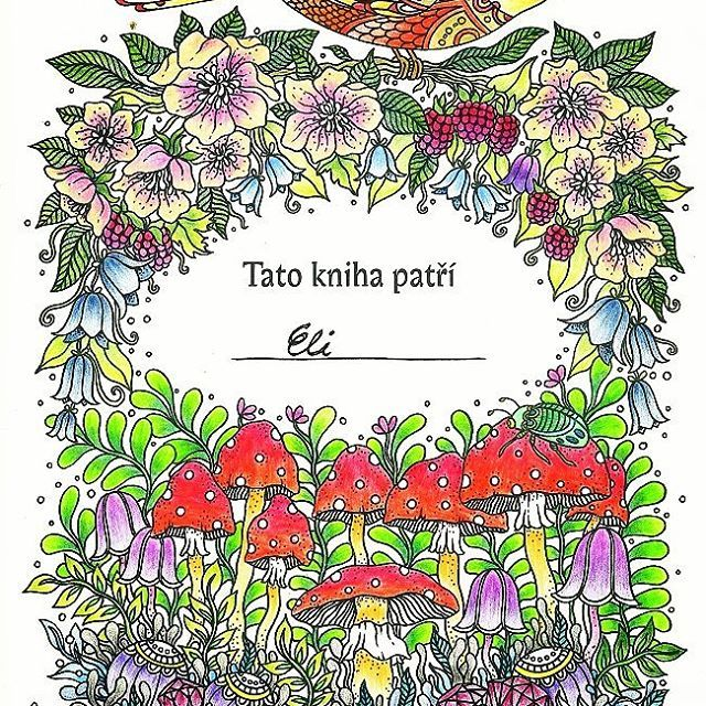 Omalovánky od #hannakarlzon #polycolor #kohinoor