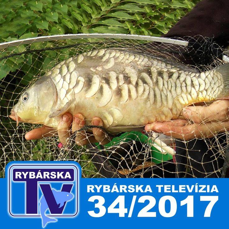 Rybárska Televízia 34/2017 - relácia pre rybárov o rybách a rybolove