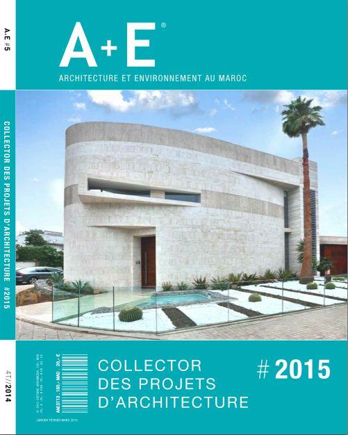 A+E // Le Collector Des Projets Du0027architecture