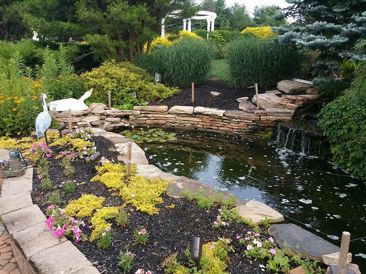 Homeowner wanted a larger pond installed. 15x10 to 25x15. #pond #backyard #landscape #garden #buckscounty