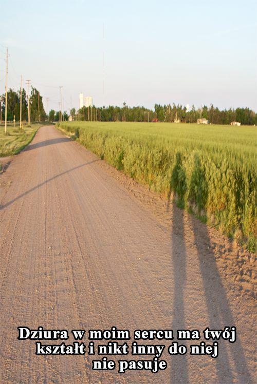 Portal randkowy dla rolników