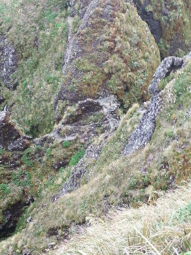 Tararua Range. Heading down to steel ladder