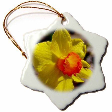 3dRose Sweet Little Daffodil a yellow daffodil with an orange center, Snowflake Ornament, Porcelain, 3-inch