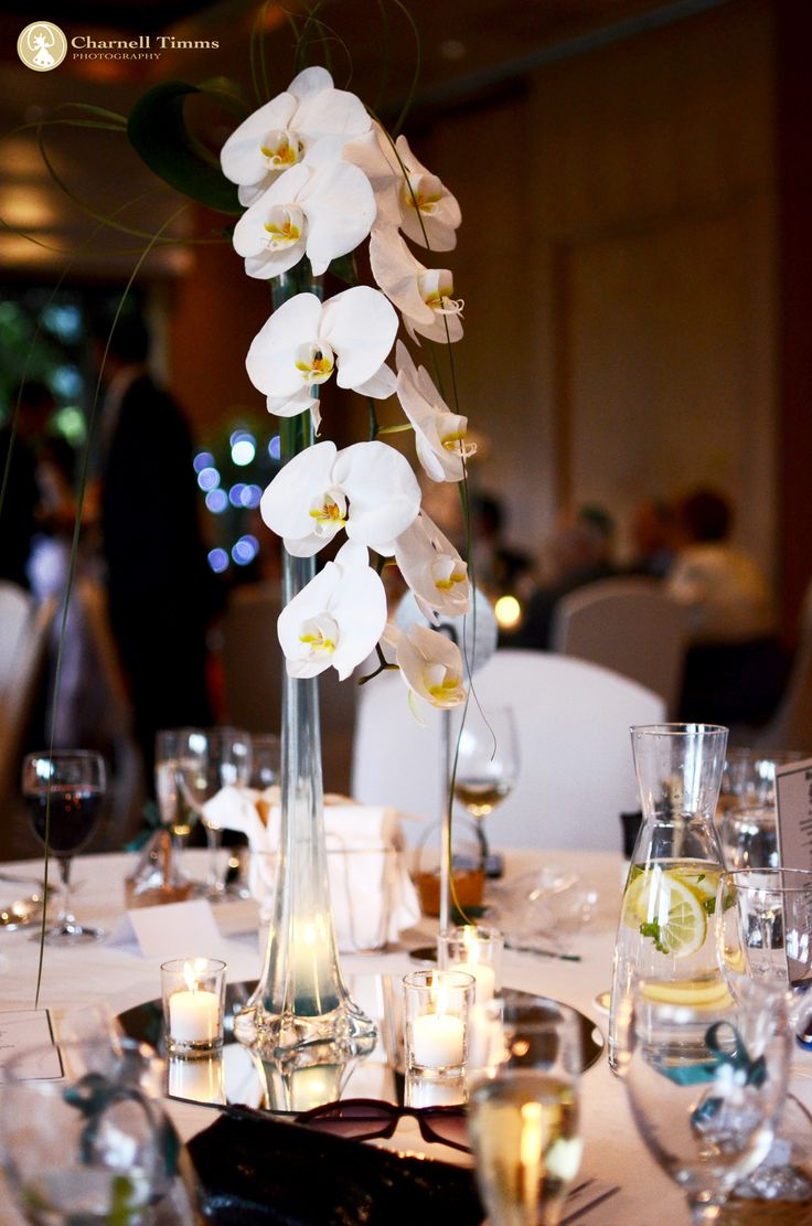 Pure and powerful white Orchid sprig at The Vineyard Hotel. Charnell Timms Photography