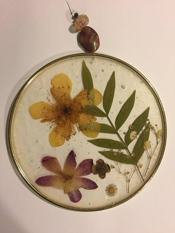 A beautiful sun catcher or wall decoration made with real pressed flowers, including a yellow hypericum, a purple dendrobium orchid. A great gift idea for the flower lover in your life! 6 inches in diameter. Preserved in liquid resin.