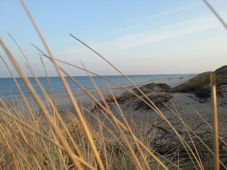 Vesterhavet i Ringkøbing, Region Midtjylland