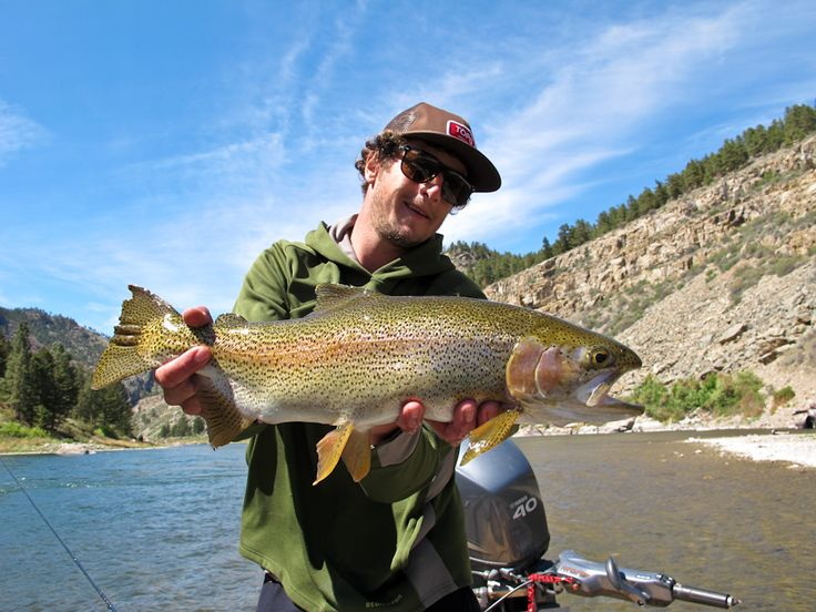 17 best images about wyoming fly fishing on pinterest for Wyoming fly fishing