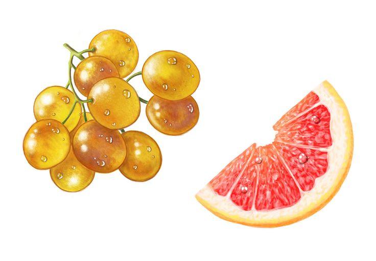 Illustrations to fruit syrup labels. #fruit #illustration #digital #jenesesimre